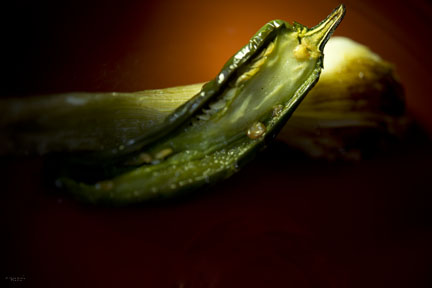 grilled pepper and onion