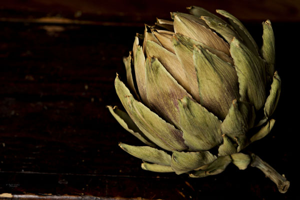 The Art of Artichokes
