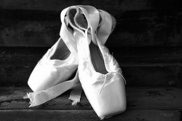 2014 Pointe Shoe Series VI