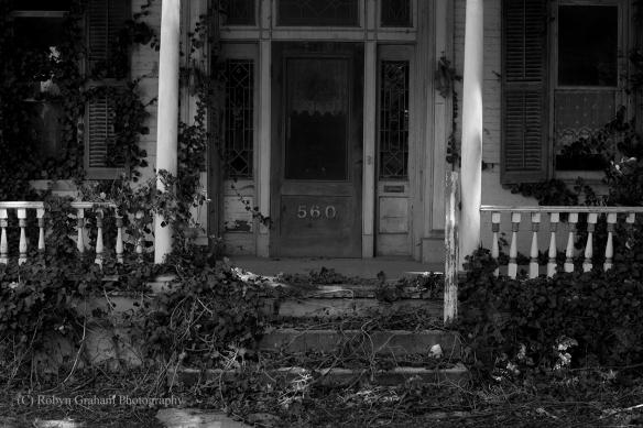 The Porch at 560